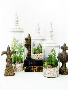 Cottage Chic Terrarium Set Woodland Whites by DoodleBirdie on Etsy