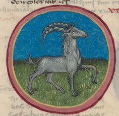 Codex Schürstab,  A treatise on medical astrology Nürnberg c 1472. (http://www.e-codices.unifr.ch/fr/list/one/zbz/C0054)