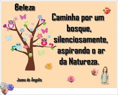 Beleza 3
