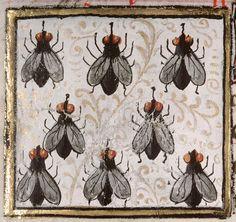 Bartholomeus Anglicus, 'Livre des propriétés des choses' (French translation of Jean Corbechon), Paris 1447 Amiens, Bibliothèque municipale, ms. 399, fol. 144r