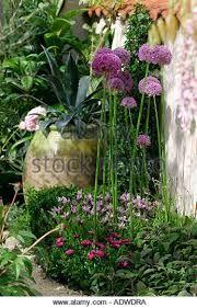 Bilderesultat for chelsea garden