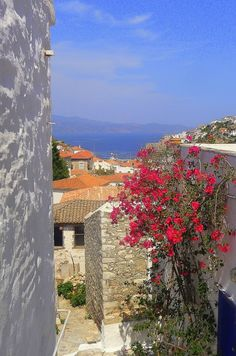 Alleys of Hydra island Greece Islands, Greece Travel, More Photos, Travel Photos, Beautiful Places, Landscapes, Greek, Places To Visit, Europe