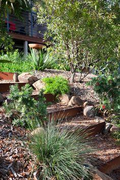 Australian Garden Design, Australian Native Garden, Bush Garden, Garden On A Hill, Beach Gardens, Farm Gardens, Native Gardens, Backyard Garden Design, Backyard Landscaping