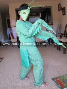 Homemade Praying Mantis Costume