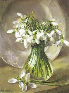 Snowdrop Arrangement