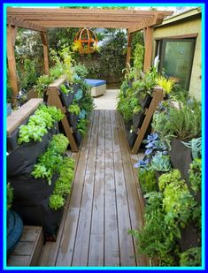 Balcony Garden vegetable yard-#Balcony #Garden #vegetable #yard Please Click Link To Find More Reference,,, ENJOY!!