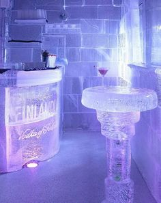 ice-bar; had drinks at one in Tokyo. Damn cold and hard to hold your ice glass but they do drape you in these gorgeous fur coats when you enter!