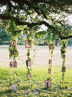 wedding backdrop wedding photo display backdrops for outdoor wedding decorations Outdoor Wedding Decorations, Wedding Themes, Wedding Styles, Ceremony Decorations, Vintage Outdoor Weddings, Wedding Centerpieces, Wedding Vintage, Centerpiece Ideas, Table Decorations