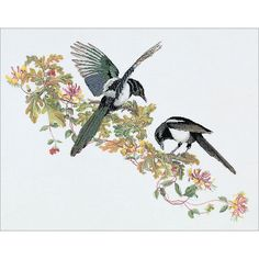 Thea Gouverneur Magpie On Aida Counted Cross Stitch Kit Cross Stitch Bird, Counted Cross Stitch Kits, Cross Stitch Embroidery, Cross Stitch Patterns, Embroidery Kits, Magpie Tattoo, Tattoo Illustration, Illustration Sketches, Animals