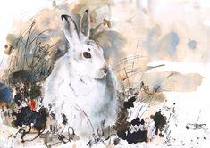 "Saatchi Online Artist: Lucy Newton; ""snowshoe hare"""