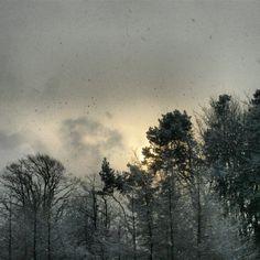 #snow #winter #snowing #winterwonderland