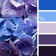 1000 ideas about purple color palettes on pinterest - Blue and purple color scheme ...