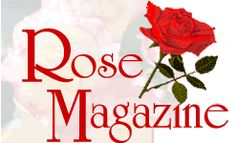 Rose bushes that don't bloom - Rose Magazine