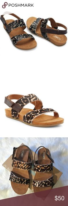 • Toms • Tierra Sand Leopard Printed Calf Hair 6.5 - Toms - New in Box - Tierra Sandal - Leopard Printed Calf Hair - 6.5 Toms Shoes Sandals