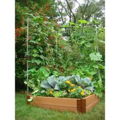 Use this in garden for vines- Home Depot $67
