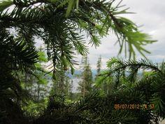 Norway - Norsk natur er flott