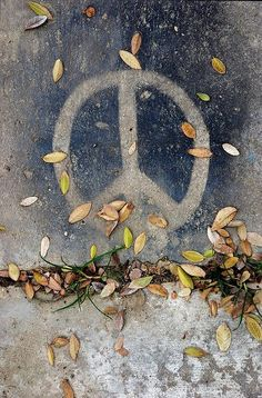 ➳➳➳☮American Hippie Art - Peace Sign #IDWP I Declare World Peace