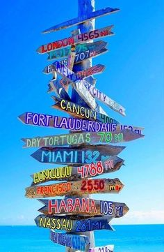 Paradise in every direction. Key West, Florida. Pinned from Royal Caribbean International #cruise #cruiseabout #caribbean
