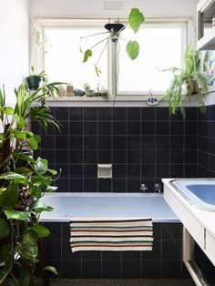 Bathroom details with indoor plants. Andrea says 'Our bathroom has dusty pink, dark and sky blue tiles. What's not to love!' Photo – Eve Wilson. Production – Lucy Feagins / The Design Files.