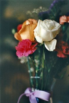 film, flowers