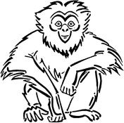 Sitting Gibbon Coloring Page Coloring Pages Animal Drawings