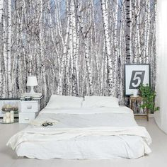 Like being in forest of white birch trees, this mural will add feelings of being outdoors to any space! Great for an accent wall or the entire room. These removable and re-positionable mural panels are an easy way to decorate any wall in your home, nur Decor, Interior, Home, Tree Wall Murals, Tree Wall, Birch Tree Wallpaper, Home Deco, Bedroom Decor, Interior Design