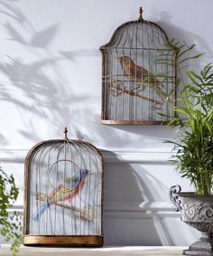 Quirky birdcage-shaped objets with images of birds perched on a key printed on antiqued glass The birdcage frame is antiqued brass-coloured metal