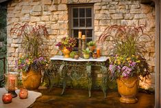 Proven Winners | Summer Meadow Superbells Plum, Tuscan Sun (heliopsis), Sweet Caroline Purple (ipomoea), Purple Fountain Grass, Supretunia Bordeaux