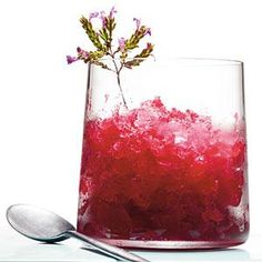 Cranberry-Whiskey Sour Slush Recipe   MyRecipes.com