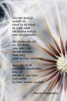 Gedichten Paula Hagenaars Poems In English, Poems Beautiful, Qoutes, Dandelion, Poetry, Dutch Quotes, Mary, Apple, Inspiration