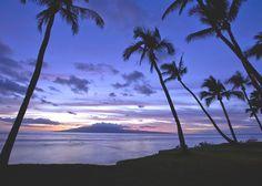 Hyatt Regency Maui Resort & Spa - Hyatt Regency Maui Resort and Spa.  achangeoflatitude.com