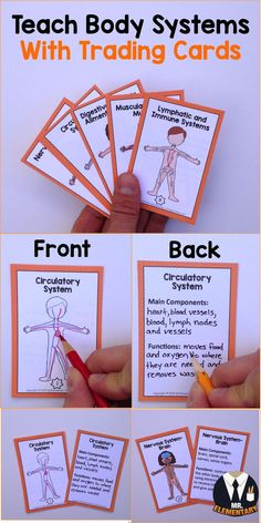 Teach the body systems with trading cards! Students draw the body system on the front. On the back they write write down body system's main components and functions. Science Vocabulary, Academic Vocabulary, Vocabulary Cards, Science Lessons, Teaching Boys, Teaching Science, Science Activities, Science Ideas, Teaching Ideas