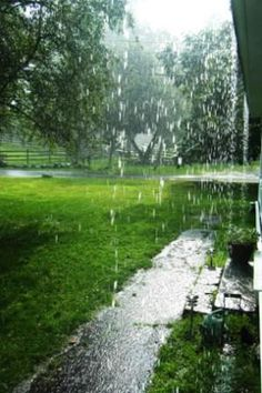☂ Loving the Gifts of Nature -=- We Always Love a Rainfall :: Among The Best Things in Life  <3