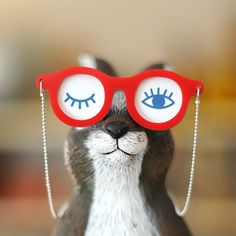 14 Best My Eyelab l Eye Hugs 4 U images  25537dae42f