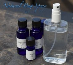 Natural Insect Repellent DIY