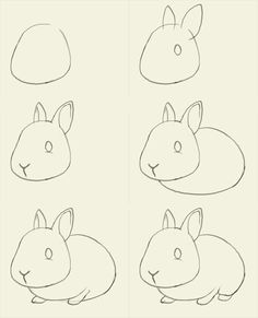 Image detail for -how to draw bunny How to draw bunny