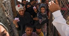 osCurve News: U.N. Calls on Western Nations to Shelter Syrian Re...