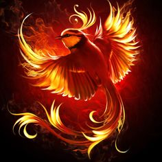 Fire bird by ElenaDudina.deviantart.com on @DeviantArt