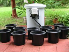The Urban Farm 10 Hydroponic vegetable gardening system.