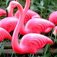 lawn flamingo costume ideas