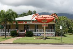 The Big Crab, Cardwell #Cairns