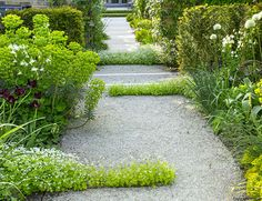 charlotterowegardens: of through - All For Gardening Garden Architecture, West London, Garden Gates, Pathways, Service Design, Garden Design, Charlotte, Sidewalk, Photo And Video