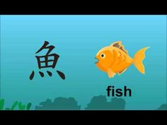 Chinese Character: yú 魚 - The Development of Chinese Characters - Fish #flteach  #Chinese
