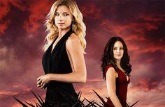 Image result for the revenge series