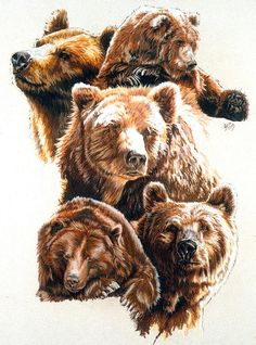 Grizzly Pastel - Bear With Me by Barbara Keith