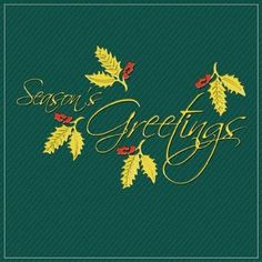 """25 Folded Premium Quality 5x7 and 6x6 """"Season's Greetings"""" Holiday Greeting Cards at WHOLESALE Price - Unique and Individually Created Holiday/Christmas/Happy New Year Greeting Cards In 5 Different Designs (BLANK INTERIOR)"""