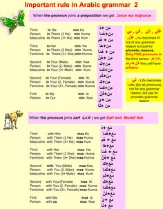 Learning Arabic MSA ( Important rule in Arabic grammar Quran Arabic, Arabic Words, Arabic Lessons, Arabic Alphabet, Learn Quran, Grammar Lessons, English Language Learning, Arabic Language, Learning Arabic