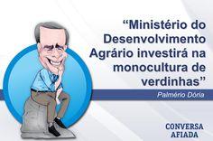 Ministério do Desenvolvimento Agrário investirá na monocultura de verdinhas