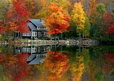 We don't have enough trees around the cottage for the colors this cottage in Maine has, but I hear the woods on the other side of the lake will be beautiful!  :D