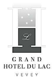 Internet Vevey, Grand Hotel, Internet